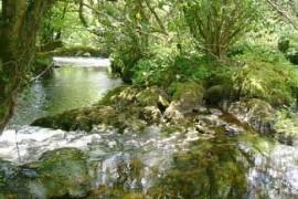 RH River